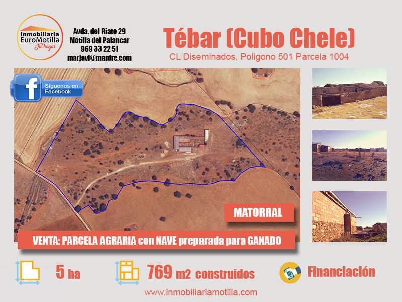 Terreno de Tébar de 5 hectáreas